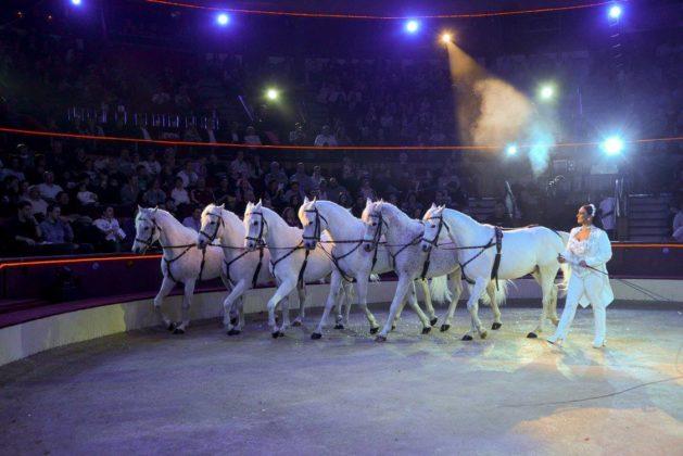 cirque de budapest